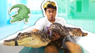 ALLIGATOR BATH CHALLENGE!