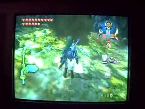 Zelda Twilight Princess bugs part 1