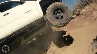 Taking On The Miller Jeep Trail In Toyota Tacomas
