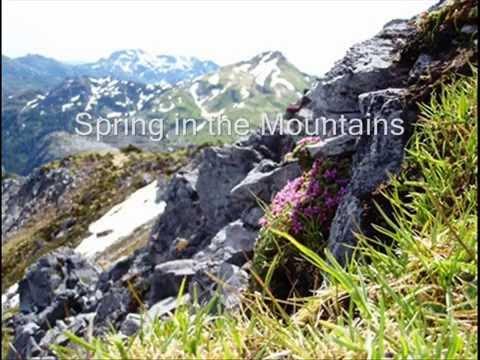 Haida Gwaii Islands: Travel Nature Wildlife