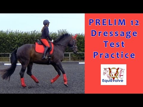 Prelim 12 Dressage Test Learning Tool