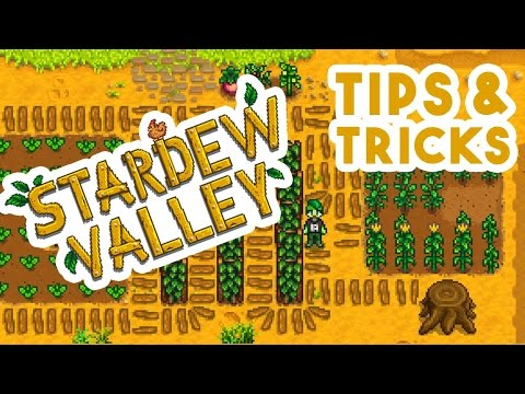 Stardew Valley \\ Tutorial \\ Money Making Tips & Tricks Guide \\ Get rich in your first year!