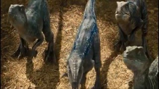 Jurassic World: Raptor training --Digital Copy quality