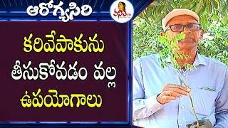 Multi Vitamin Plant Uses For Health | Health Tips By RamaRao | Arogyasiri | VanithaTV