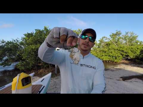 The Best Way To Rig Blue Crabs (For Bull Redfish & Black Drum)