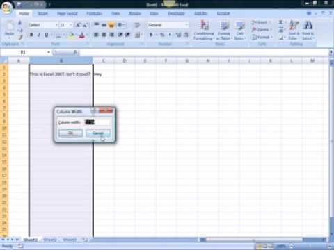 Changing Column Width amp Row Heights in Excel 2007
