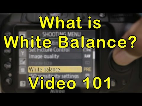 White Balance, What does it mean? Video 101! Camera Settings Explained!