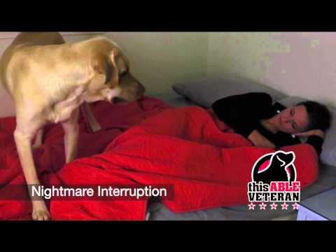 NightmareInterruption