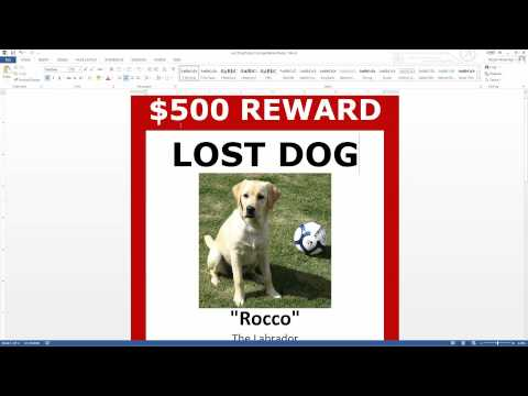 Lost Dog Poster Template FREE Download (MS Word)