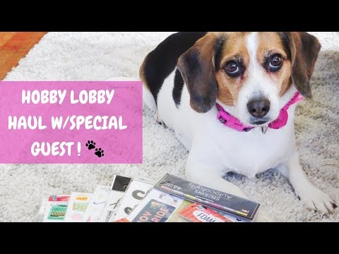 HOBBY LOBBY HAUL | with Special Guest!
