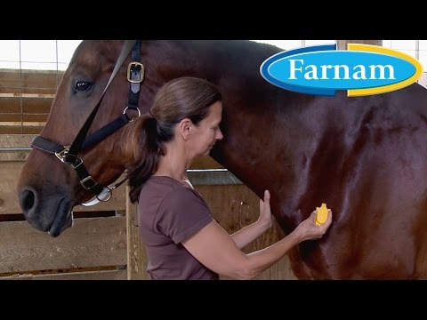 NEW! Equi-Spot® Spot-on Protection for Horses