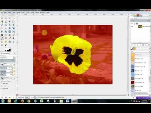 Gimp 2.8 Tools Tutorial - How to use Selection Tools