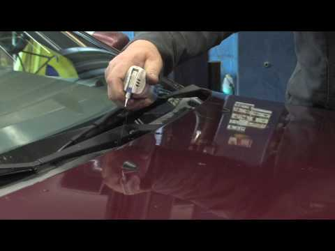 Car Maintenance : How to Get Rid of Mildew Smell in a Car