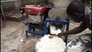 cassava grater - The Most Popular High Quality Videos - Download