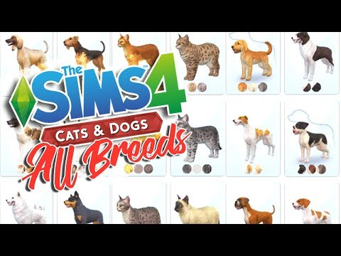THE SIMS 4 CATS & DOGS | ALL BREEDS OVERVIEW