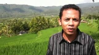 :MR KAMISAMA: Your Driver on Bali