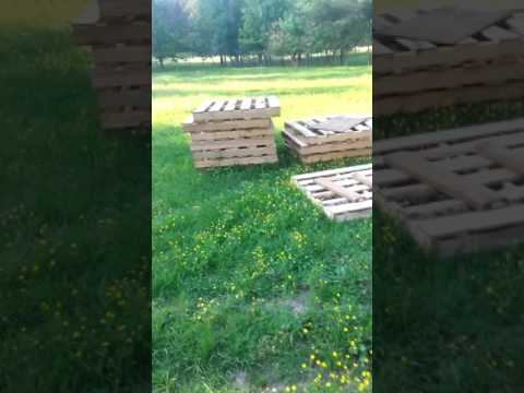 DIY - How to Build the Best Pallet Chicken Coop Ever - Lost Footage PT. 2