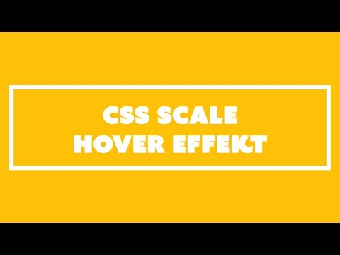 Box Hover Effekt mit CSS scale()