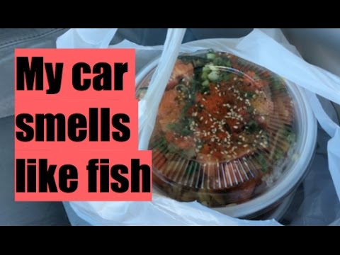 My car smells like fish | Jennica & Lucas