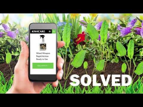 Kiwicare Problem Solver 15secTVC 2017
