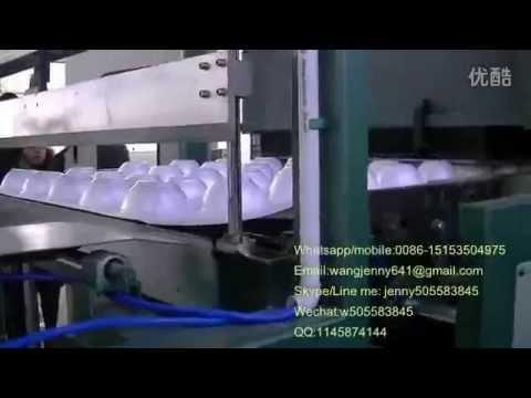 fully automatic polystyrene foam box/plate vacuum forming machine cutting off machine