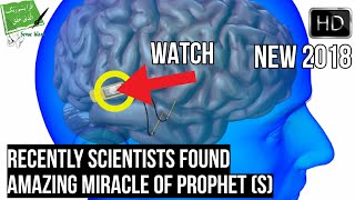 SCIENTISTS DISCOVERED AMAZING MIRACLE OF PROPHET (S) ABOUT MEMORY LOSS (NEW 2018)