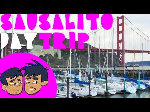 Must See San Fran: Sausalito and Marin County Tour