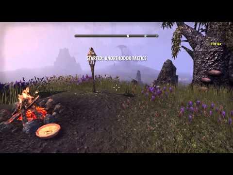 The Elder Scrolls Online console beta Unorthodox Tactics