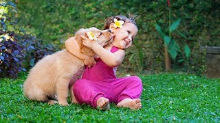 Puppies and Babies Playing Together Compilation (2014)