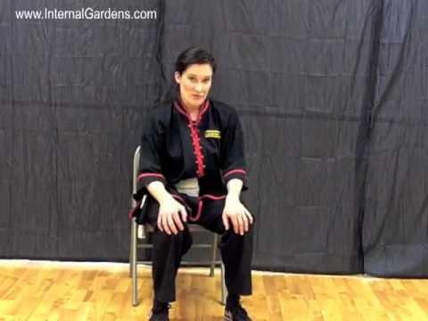 Tai Chi HowTo: Quick & Easy Way to Treat Knee Pain or Stiffness - from www.InternalGardens.com