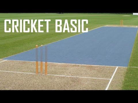 Cricket Basic Parameters - Cricket Fielding Positions - Batting Shots in Cricket
