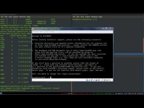 Fun with SSH: Setting Up a SSH Server on Linux/FreeBSD