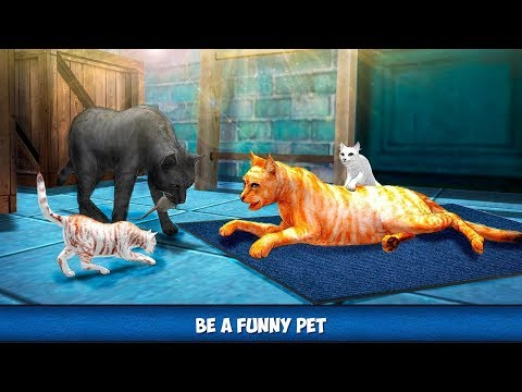 🐈Home Cat City Survival  Lost Kitten Adventure-Приключения Кота и Котят- By Virtual Animals World