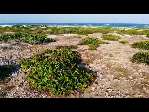 DJI Mavic Air first flight in Aruba