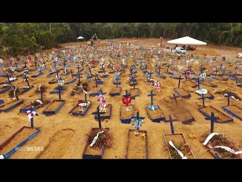 Brasilien: Corona-Hotspot Amazonas   Weltbilder   NDR