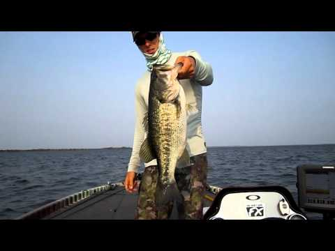 Bass Fishing Offshore Structure