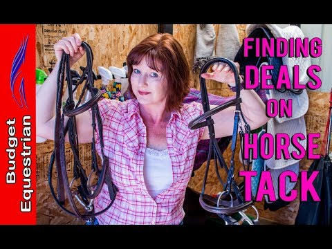 How To Find Great Deal On Horse Tack | Budget Equestrian