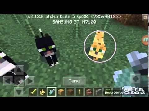 How to make a CAT in minecraft pe 0.13.0
