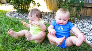 Baby Buddies!   😂  Funny Baby Video   We Laugh