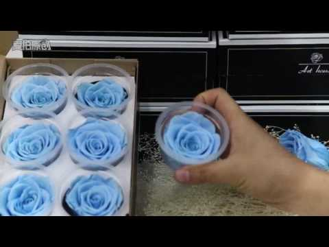 Rainbow Floral is Where to buy the cheap preserved fresh rose head with Top quality