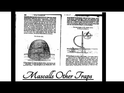 Mascalls other traps