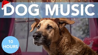 RELAXING CHRISTMAS MUSIC FOR DOGS! Away in a Manger!