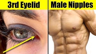 10 Most Useless Body Parts We Can Live Without
