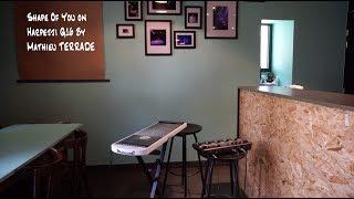 Shape Of You (Ed sheeran) on Harpejji G16 & RC-505 boss