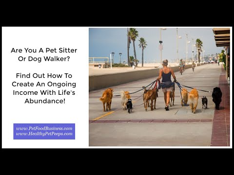 Why Pet Sitters And Dog Walkers Should Join Life's Abundance