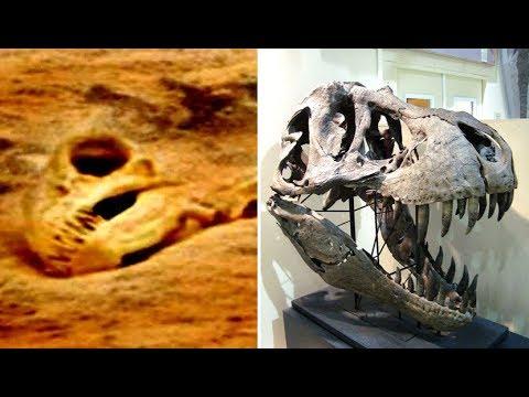 Giant Dinosaur Skull Discovered On Mars? | Anomalies On Mars
