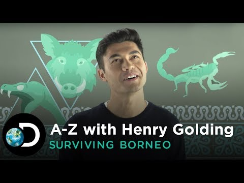 A-Z with Henry Golding | Surviving Borneo