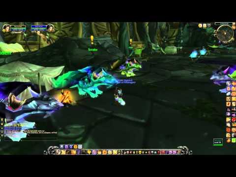 World of Warcraft: Netherwing Drake