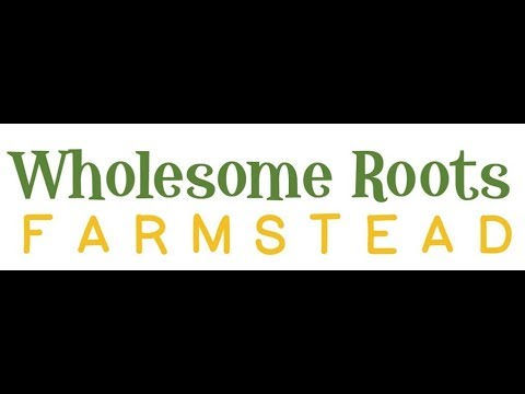 Wholesome Roots Live Stream