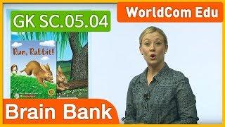 Guided Readers | Brain Bank Kindergarten Science | 05. Run Rabbit | Kids Vocabulary